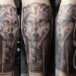 Wolf, Stadt