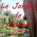 Photos Le jardin de Monet 2011