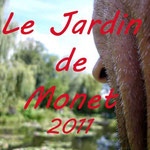 Photos Le jardin de Monet 2011