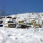 apiculture eybens