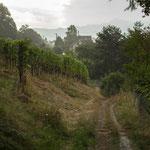 19. Etappe - Gubelgässli, nähe Goldenberg