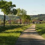 15. Etappe - Hagenbuch, Richtung Egghof bzw. Aadorf