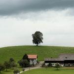 1. Etappe - Schönau, oberhalb Hütten