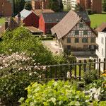 Seebach, Käshaldenstrasse