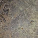 Altre tracce nei limi, visibili i dendriti di ossidi metallici.