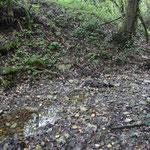 Il torrente era ridotto a poche pozze quando lo abbiamo visitato.