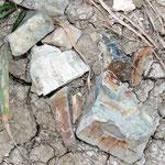 Pezzi di rocce appartenenti alla formazione FYT ritrovabili nelle formazioni TNA e SBM.
