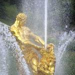 Energie in Gold und Silber - 42 Punkte, 1. Platzz