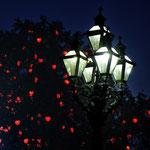 Nachtspaziergang in Wien - 31 Punkte, 2. Platz