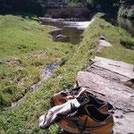 """06.09.2009: Traumhaftes Rasten kurz vor """"Samos"""" mit Besuch einer riesigen Libelle"""