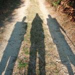 13.08.2009: Schattenbild 1