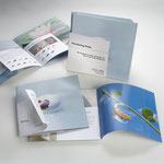 Oticon / Delta hearing aid POD display and brochure / copywriter: Andy Garon & Co.