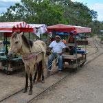 Mit Pferd und Karre ging es auf Gleisen zu den Cenoten.