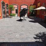 Der Rabe (cuervo) ist das Wahrzeichen.