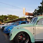 """Etliche VW Käfer, mal """"mexikanisch restauriert"""" (schön nur auf den ersten Blick) bis hin zu perfekten Käfern."""