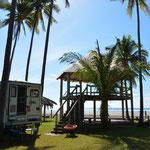 Immer schön Acht geben auf herunterfallende Kokosnüsse!