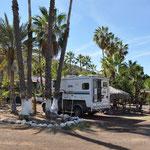 Camping unter Palmen in Mulegé.