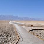 Badwater - riesige Salzflächen unter dem Meeresspiegel.