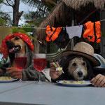 Nora und Charly beim Dinner :-) --> Was man(n) nicht alles tut, wenn er einmal Zeit hat...