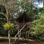 Auch Baumhäuser können zum Übernachten gemietet werden.
