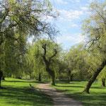 John Hendry Park