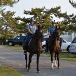Die Polizei patroullierte auf Pferden durch den Campingplatz. Kontrollieren sie, ob das Alkoholverbot eingehalten wird?