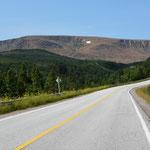 Fahrt durch den Gros Morne Nationalpark. Links sind die Tablelands zu sehen.