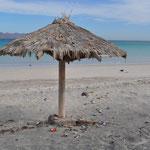 Leider ein häufiges Bild, nachdem Mexikaner am Strand waren. Sie sind sich nicht gewohnt, ihren Abfall zu entsorgen...