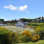 Aussicht vom Ucluelet Campground auf den Hafen
