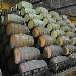 Der älteste Tequila wird mindestens drei Jahre in Eichenholz-Fässern gelagert.