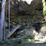 Hier die zweite Cenote. Wild und nichts zum baden.