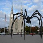 Die Riesenspinne vor der Notre Dame.
