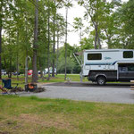 Auf dem Cedar Point Campground im Croatan National Forest.