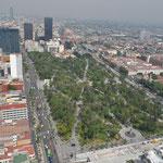 Das Muster der Spazierwege im Parque de Alameda ist aus dieser Höhe gut zu erkennen.