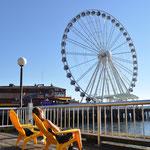 Seattle's Riesenrad und Angi am dösen.