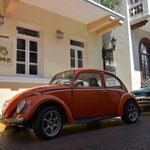 Claudio's Leidenschaft sind VW Käfer und VW-Büssli...
