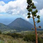Während dem Aufstieg zum Vulkan Santa Ana war auch der Izalco stets im Blickfeld.
