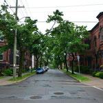 Typische Wohnstrasse in der Stadt.