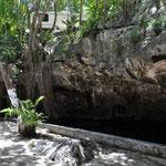 Wir konnten mit unserem Camper direkt neben der Cenote übernachten und so jederzeit einen Sprung ins erfrischende Wasser machen.