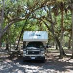 Schattiges Plätzchen im Collier-Seminole State Park in Naples.
