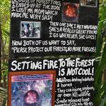 Fuego's Geschichte