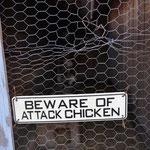ACHTUNG Chicken ;-)