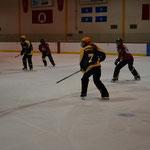 Der Puck fehlt, es wird mit einem Eishockeystock (ohne Schaufel!) und Ring gespielt.