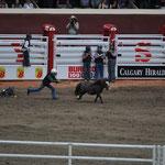Wettstreit der Kinder - Einfangen des wilden Ponys