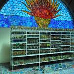 Verkaufsräume der Glasbläserei.