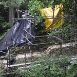 Unzählige Gebäude liegen noch verborgen im Dschungel, hier wird wieder eines ausgegraben und restauriert.