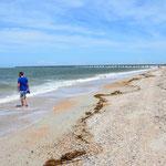 Spaziergänge am Strand sind einfach immer toll :-)