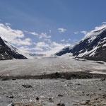 Athabasca Glacier - auch dieser Gletscher wird kleiner und kleiner...