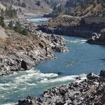 Fraser River und ein paar Kajakfahrer.