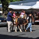 Ponyreiten ist auch möglich, den Kindern macht es offensichtlich Spass.